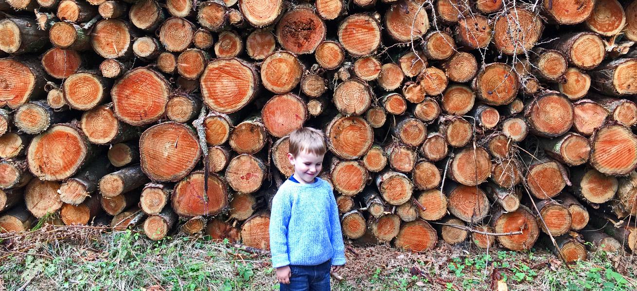 Oakford Fine Carpentry - Logs - Banner